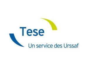 Le TESE : Titre Emploi Service Entreprises